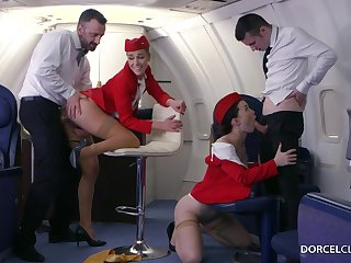 Alexis Field-glasses and Misha Cross are VIP stewardesses who were hired round do everything round please dudes